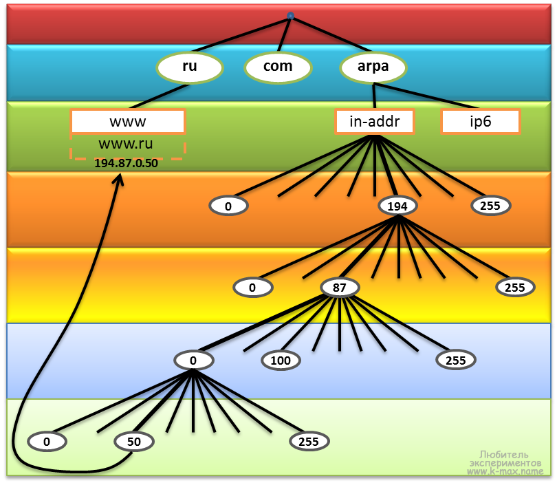 структура домена in-addr.arpa.